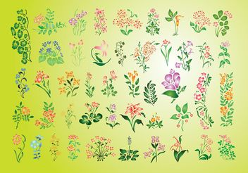 Summer Flowers Set - бесплатный vector #145937