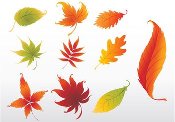 Swirling Leaves Graphics - Kostenloses vector #145967