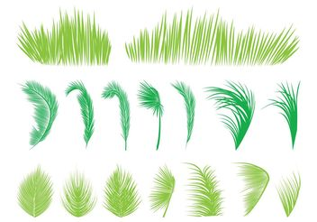 Palm Tree Leaves - Free vector #146027