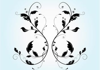 Vector Flourish Graphics - vector gratuit #146327