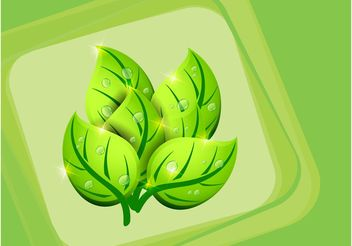 Vector Leaves - vector gratuit #146347