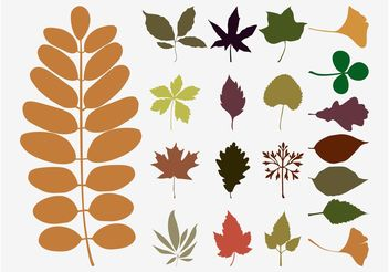 Fall Leaves Vectors - Free vector #146417