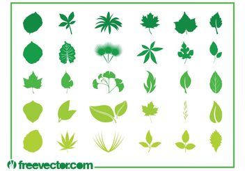 Leaves Graphics Set - vector #146457 gratis