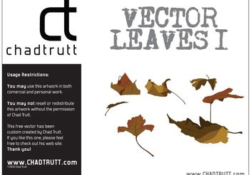 Leaves 1 - vector gratuit #146687