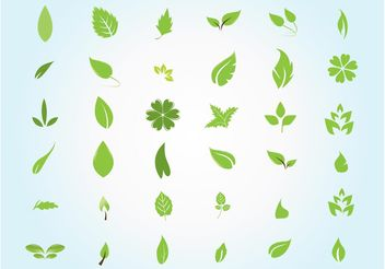 Garden Leaves - Free vector #146717
