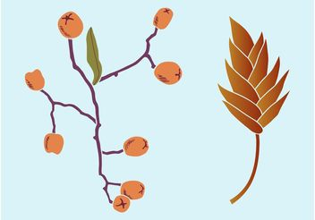 Autumn Plants - vector gratuit #147887