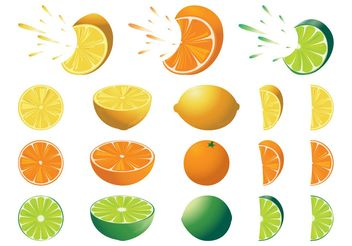Citrus Fruits Set - Free vector #147947