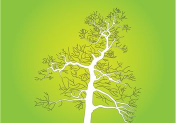 Tree Outlines - vector gratuit #152947