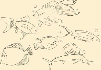 Hand Drawn Fish Vectors - Free vector #156647