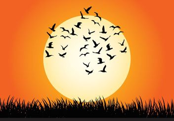 Sunset Vector Illustration - Free vector #157727