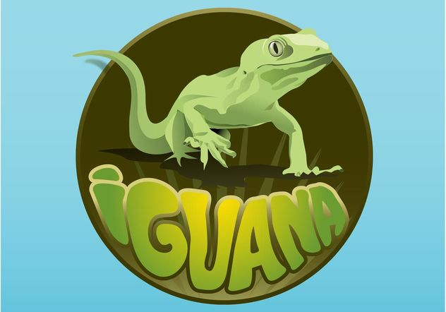 Layout de iguana - Free vector #159317