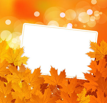 Fallen Dried Leaves with Message Box - Free vector #165407