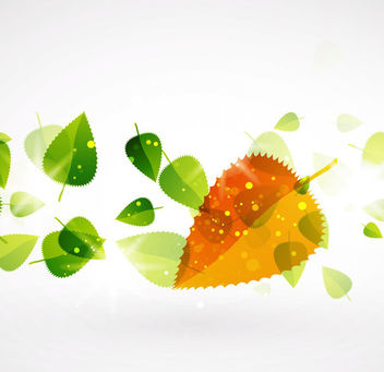 Fluorescent Floating Autumn Leaves Background - vector gratuit #166437