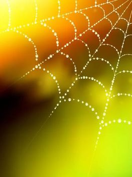 Glowing Spider Web Blurry Background with Droplet - vector gratuit #166817