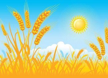 Funky Style Wheat Field on a Sunny Day - бесплатный vector #166967