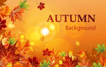 Flourish Autumn Layout - Free vector #168127