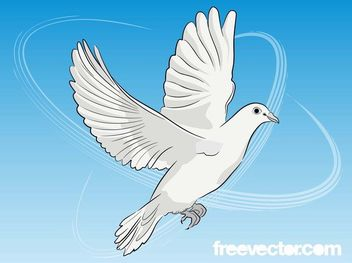 Flying Dove Black & White Sketch - Free vector #173097