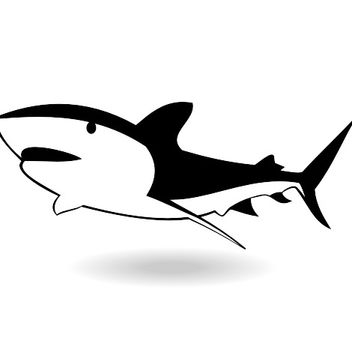 Big shark vector - vector gratuit #173357