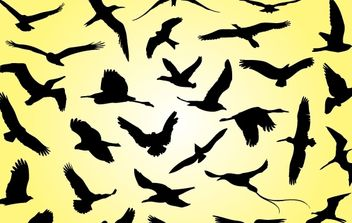 Silhouette Flying Birds - vector gratuit #174547