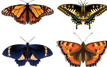 Vector butterfly - Free vector #176497