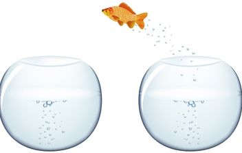 Jumping Goldfish - vector gratuit #177677