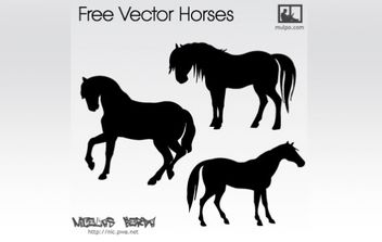 Free Vector Horses - Free vector #179157