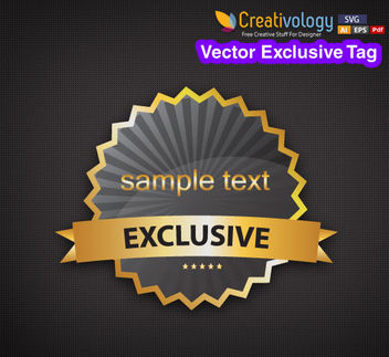 Modern Elliptical Exclusive Tag - Free vector #180577