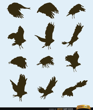 Flying bird motion silhouettes - Free vector #181267