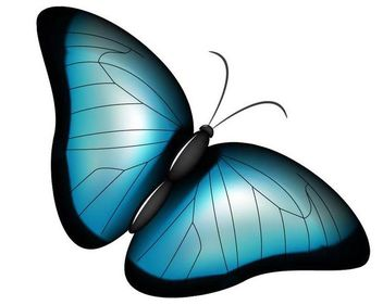 Stylish Blue Butterfly - vector gratuit #181297