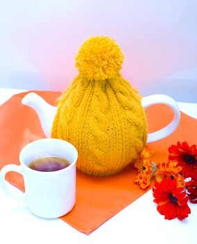 Teapot in knitted hat, cup of tea and flowers - image #182547 gratis