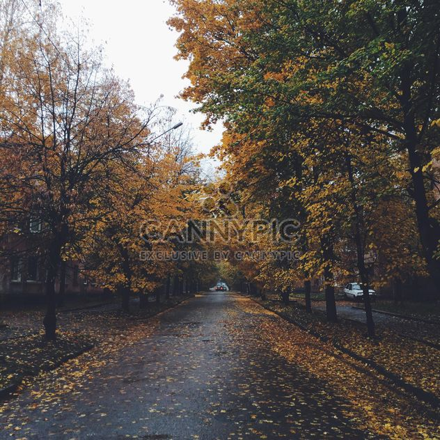 Autumn in the city - Free image #185647
