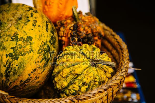 Close-up of pumpkins in basket - Free image #186187