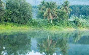 green trees reflected in water in the morning mist - image #186417 gratis
