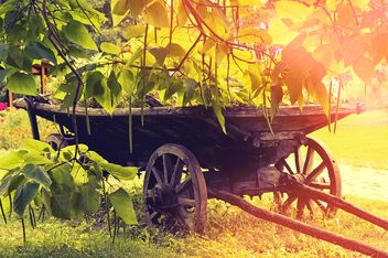 Wooden cart on green grass - image gratuit #186797