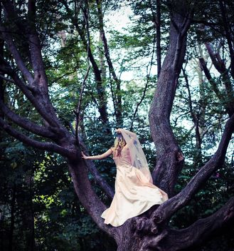 Girl in beautiful dress on the tree - image #187167 gratis