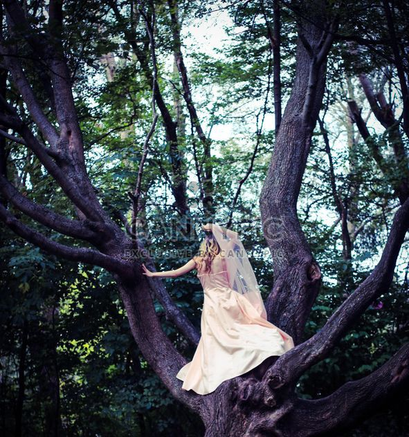 Girl in beautiful dress on the tree - Free image #187167