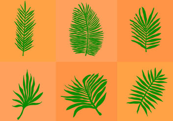 Palm Leaf Isolated - Free vector #200137