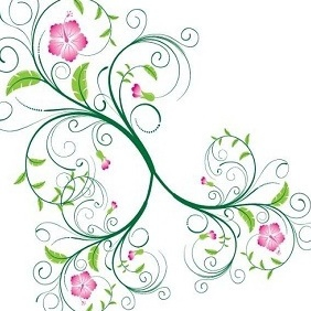 Vector Flowers - Vector Pack - vector gratuit #204177