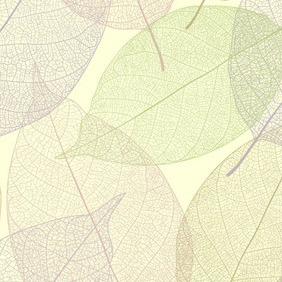 Transpatent Leaves - Kostenloses vector #207787