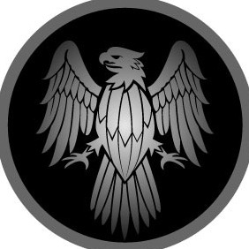Eagle Spread Wings - Free vector #207817