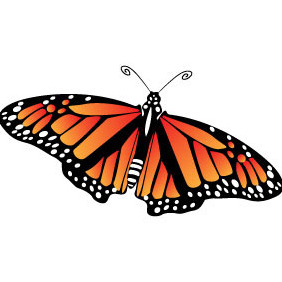 Butterfly Vector Image VP - vector gratuit #208687
