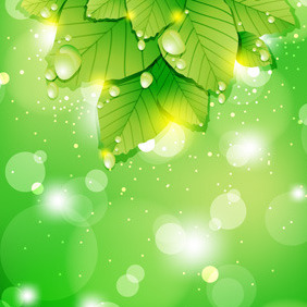Realistic Leaf Background Vector - Free vector #211007