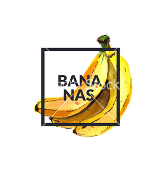 Free bananas watercolor vector - vector gratuit #213317