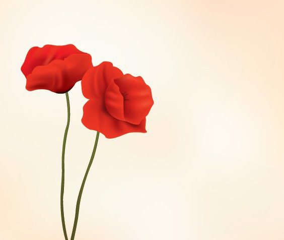 Red Flowers - Free vector #213457