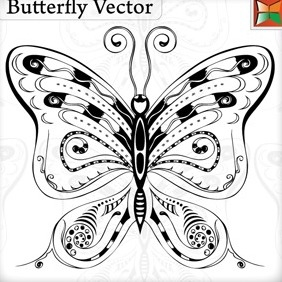 Butterfly Vector - Free vector #215327