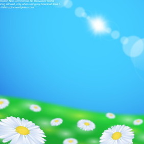 Daisy Flower Field Background - vector gratuit #216457