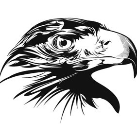 Detailed Eagle - vector #216977 gratis