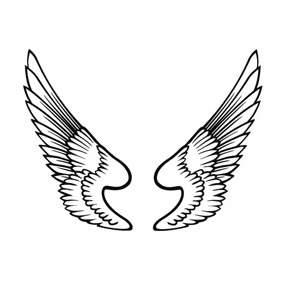 Free Wings Vector - vector gratuit #218927