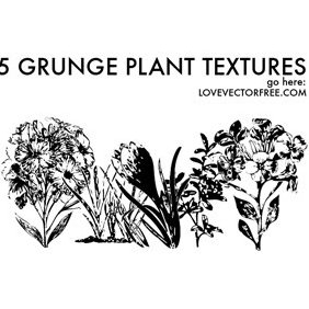 5 Grunge Plant Textures - Free vector #221007