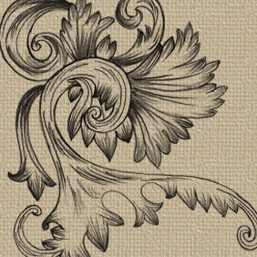 Hand Drawn Swirl Ornaments - Free vector #222257